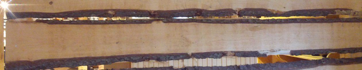 Hirnholz – für Küche & Kundendienst unterwegs mit ♥️